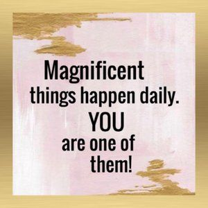 Other - Magnificent things happen daily..